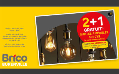 2+1 gratuit* sur toutes les ampoules Sencys