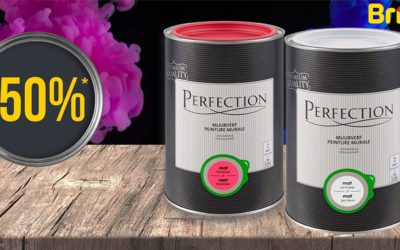 -50%* sur le stock restant de la peinture murale de Perfection